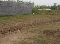 فروش زمین مسکونی 4600 متر در آستانه اشرفیه در شیپور-عکس کوچک