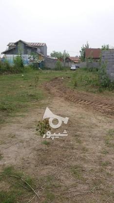 فروش زمین مسکونی 4600 متر در آستانه اشرفیه در گروه خرید و فروش املاک در گیلان در شیپور-عکس2