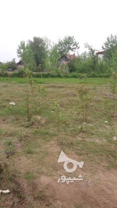 فروش زمین مسکونی 4600 متر در آستانه اشرفیه در گروه خرید و فروش املاک در گیلان در شیپور-عکس3