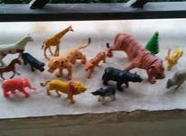 اسباب بازی باغ وحش در شیپور-عکس کوچک