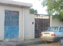 منزل مسکونی 200 متر متر آجر آهن در بالاقارداش در شیپور-عکس کوچک