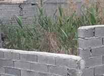 فروش زمین مسکونی 230 متر در بلوار شریفی بابلسر در شیپور-عکس کوچک