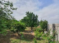 فروش زمین مسکونی 350 متر در بابل در شیپور-عکس کوچک
