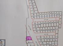فروش زمین مسکونی 165 متر در بابلسر در شیپور-عکس کوچک