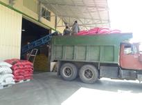 کارگر ساده جهت کارخانه نیازمندیم در شیپور-عکس کوچک