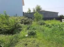 فروش زمین مسکونی ساحلی زیباکنار در شیپور-عکس کوچک