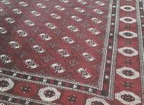 فروش فوری قالی ترکمن 12متری در شیپور-عکس کوچک