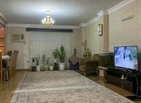 فروش آپارتمان 120 متر در فلسطین در شیپور-عکس کوچک