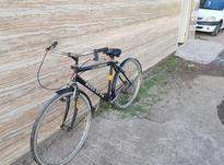 دوچرخه رود استار 26  در شیپور-عکس کوچک