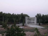 فروش باغچه 500 متر جاده دریا در شیپور