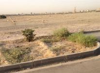 زمین کشاورزی 250 متری در زاهدان در شیپور-عکس کوچک