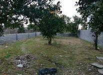 فروش زمین 220 متر در نوشهر-حومه نوشهر در شیپور-عکس کوچک