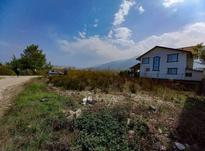 فروش زمین مسکونی 265 متر در نوشهر در شیپور-عکس کوچک