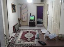 اجاره آپارتمان 45 مترتکخواب باپارکینگ در تسلیحات در شیپور-عکس کوچک