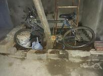دوچرخه بی رنگ تمام  در شیپور-عکس کوچک