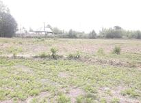 فروش زمین مسکونی 4300 متری در صومعه سرا در شیپور-عکس کوچک
