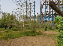 فروش زمین مسکونی 700 متر در لاهیجان در شیپور-عکس کوچک