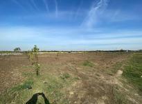 فروش زمین 2800 متر در جاده بابل در شیپور-عکس کوچک