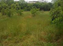 فروش زمین 4800 متر در کرفا در شیپور-عکس کوچک