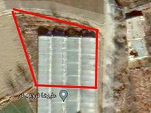 فروش باغ وزمین کشاورزی 1000 متری در شیپور