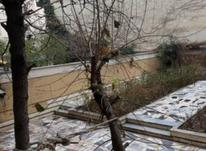 فروش آپارتمان 160 متر در فرمانیه در شیپور-عکس کوچک