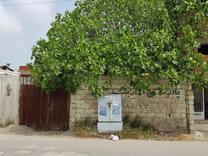 فروش زمین در فیروزکنده علیا 100 متری جاده اصلی در شیپور