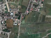 فروش زمین مسکونی 170 متر در بابلسر در شیپور-عکس کوچک