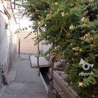 فروش ویلا 80 متر در ورامین در گروه خرید و فروش املاک در تهران در شیپور-عکس6