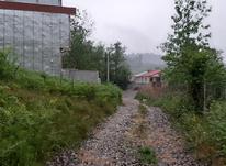 زمین مسکونی 500 متر در چلک لاهیجان در شیپور-عکس کوچک
