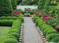 فضای سبز و باغبانی  در شیپور-عکس کوچک