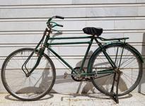 دوچرخه چینی فونیکس سه مار در شیپور-عکس کوچک