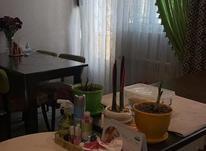 55 متر ، ویو فضای سبز ، 2 خواب ، سالن پرده خور در شیپور-عکس کوچک