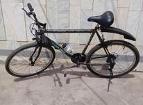 دوچرخه حرفه ای سلامت دنده ای در شیپور-عکس کوچک