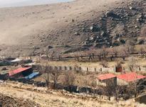 فروش زمین 7000 متر در شلمزار در شیپور-عکس کوچک