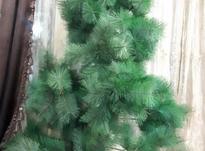درخت کریسمس در شیپور-عکس کوچک