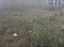 فروش زمین مسکونی 215 متری سنددار در لنگرود در شیپور-عکس کوچک