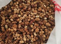توت خشک مناسب دوشاب در شیپور-عکس کوچک