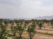 فروش یا معاوضه زمین 4000متری دیوارکشی کامل در شیپور-عکس کوچک