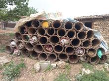 سبد زنبور عسل در شیپور