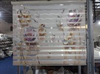 شریک شراکت تولیدی پرده زبرا در شیپور-عکس کوچک