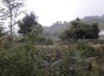 قلعه رودخان ویلایی سند تک برگ در شیپور-عکس کوچک