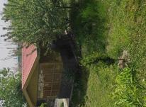 فروش ویلا باغ   در شیپور-عکس کوچک