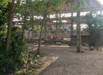 فروش زمین مسکونی 289متری شهری در شیپور-عکس کوچک