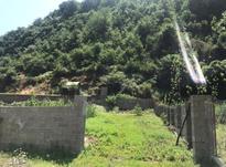 فروش زمین مسکونی 500 متر در فومن در شیپور-عکس کوچک