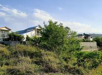 زمین مسکونی الحاق ب بافت در شیپور-عکس کوچک