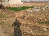 زمین مسکونی در بهدشت در شیپور-عکس کوچک