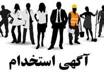 استخدام نیرو اداری خانم در شیپور-عکس کوچک