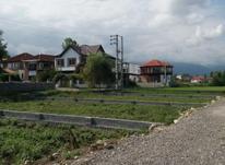 فروش زمین مسکونی 230 متر در رویان در شیپور-عکس کوچک