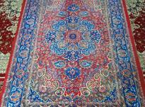 موکت 6متری طرح فرش در شیپور-عکس کوچک