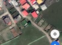 زمین مسکونی 220 متر شهرک کاج بابلسر در شیپور-عکس کوچک